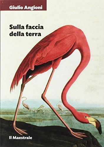 Giulio Angioni: »Sulla faccia della terra« auf Bücher Rezensionen